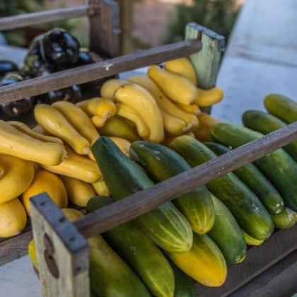 tom-peterson-rb-farmers-market-5_image