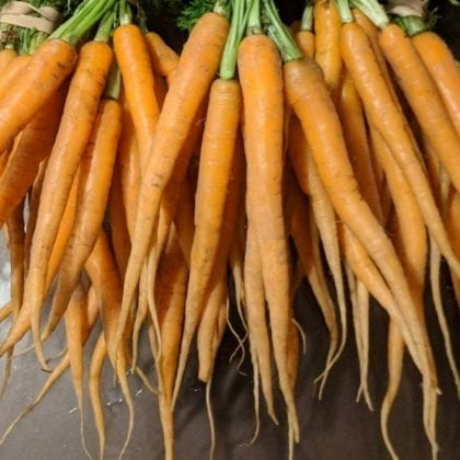 farm_carrots_1_image