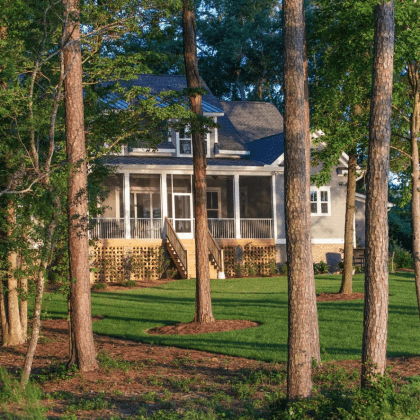 house-in-trees_image