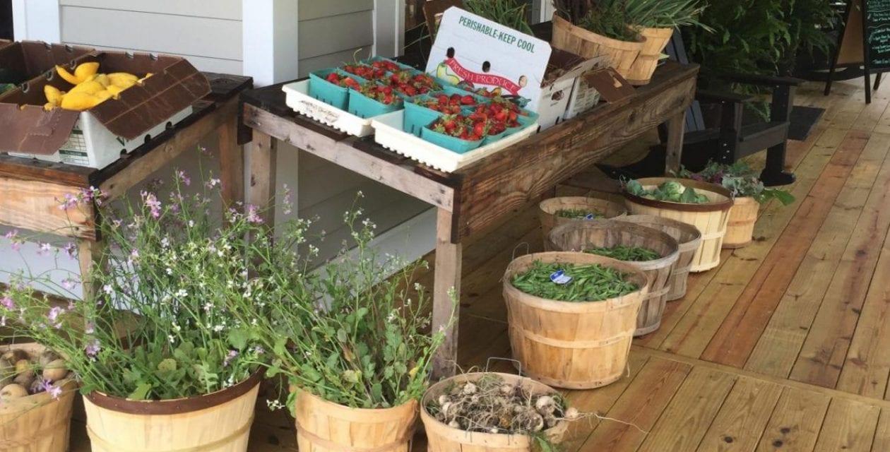 Saturday Farm Market: Shop The Best Organic Produce