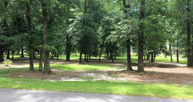 Parks & Trails
