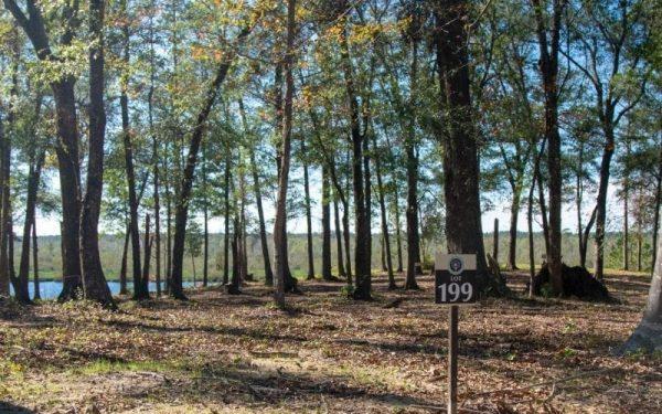 Home Site 199